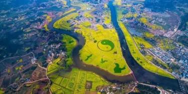 万众期待,重庆潼南万亩油菜花海景区开放,毕加带你去看花节!