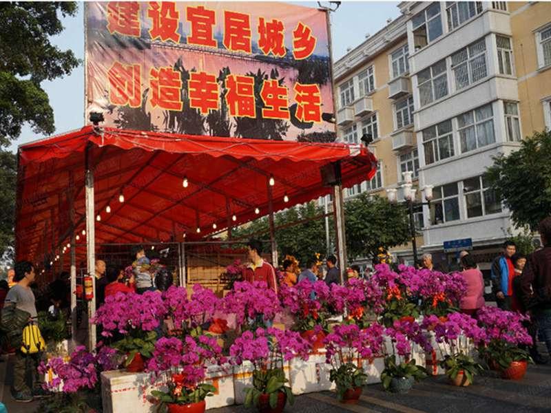 广州海珠迎春花市设计
